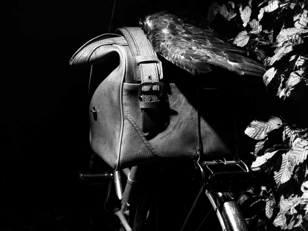 neg_fahrrad